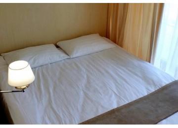 Эконом 2-местный 1-комнатный| Гранд Отель «Абхазия »| Номера и Цены